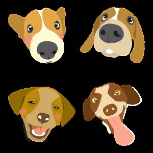 Puppy Jokes