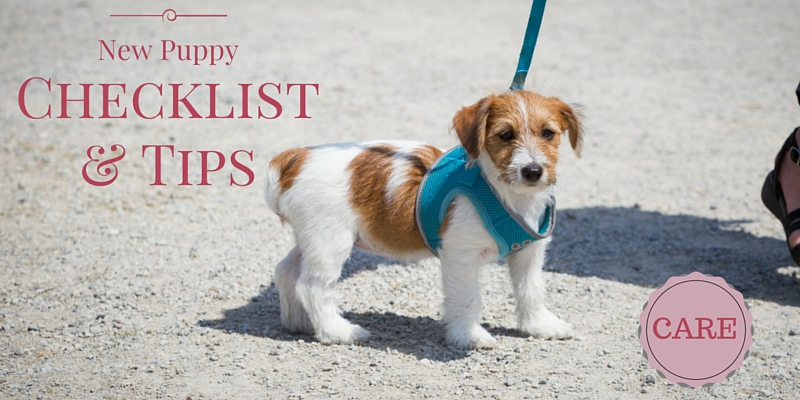 New Puppy Checklist and Tips