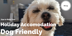 How to Make Your Holiday Accomodation Dog Friendly