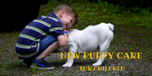 New Puppy Care For Children