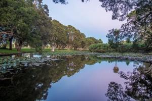 centennial-park-sydney