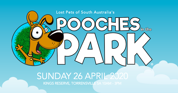 Pooches-in-the-park-event
